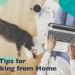 Pro Tips for Working from Home from the okwrite Team